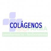 Colágeno / Suplementos Huesos y Articulaciones